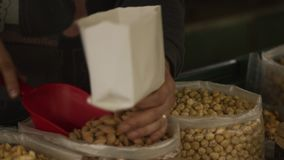 Καρύδια από το Bazaar απόθεμα βίντεο