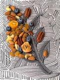 Καρύδια και ξηρός - μίγμα φρούτων στοκ εικόνες με δικαίωμα ελεύθερης χρήσης