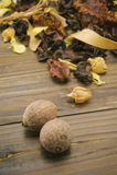 Καρύδια και ξηρό φυτό Στοκ εικόνες με δικαίωμα ελεύθερης χρήσης