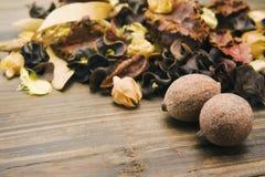 Καρύδια και ξηρό φυτό Στοκ Εικόνες