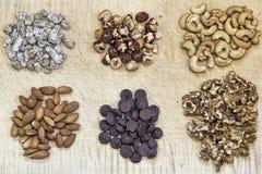 Καρύδια και σοκολάτα στον τέμνοντα πίνακα Στοκ Εικόνες