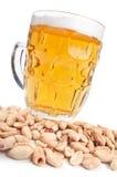 καρύδια μπύρας Στοκ Εικόνες