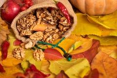 Καρύδια σε έναν σάκο, φρούτα και λαχανικά στο πεσμένο υπόβαθρο φύλλων, εποχή φθινοπώρου Στοκ φωτογραφία με δικαίωμα ελεύθερης χρήσης