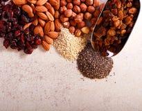 Καρύδια, σπόροι, το βακκίνιο και σταφίδα στοκ φωτογραφία με δικαίωμα ελεύθερης χρήσης