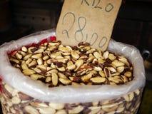καρύδια της Βραζιλίας Στοκ φωτογραφία με δικαίωμα ελεύθερης χρήσης