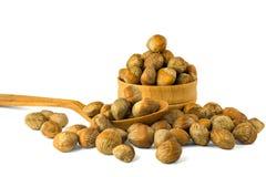 Καρύδια φουντουκιών της τουρκικής φουντουκιάς Η έννοια των καρυδιών φουντουκιών όπως Στοκ φωτογραφία με δικαίωμα ελεύθερης χρήσης
