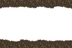 Καρύδι κέδρων κυμάτων γραμμών στην καφετιά φυσική άσπρη βάση κοχυλιών το φθινόπωρο κεντρικών πλαισίων Στοκ εικόνες με δικαίωμα ελεύθερης χρήσης