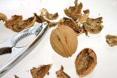 καρύδι κροτίδων στοκ φωτογραφίες