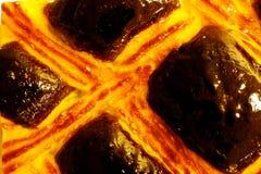καρύδι λούστρου Στοκ φωτογραφίες με δικαίωμα ελεύθερης χρήσης