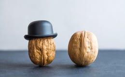 Καρύδι με τα μαύρα καπέλα ξύλων καρυδιάς κυρίων στο υπόβαθρο πετρών Δημιουργική αφίσα σχεδίου τροφίμων Μακρο φωτογραφία εστίασης  Στοκ Εικόνα