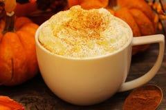 Καρύκευμα κολοκύθας latte σε ένα άσπρο φλυτζάνι Στοκ φωτογραφία με δικαίωμα ελεύθερης χρήσης