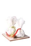 καρύκευμα σακουλιών χο Στοκ Εικόνα