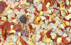 καρύκευμα σκόρδου τσίλι Στοκ Εικόνες