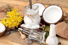 Καρύδα και γάλα, κοκοφοίνικες πετρελαίου για τα οργανικά υγιή τρόφιμα και ομορφιά στοκ φωτογραφία με δικαίωμα ελεύθερης χρήσης