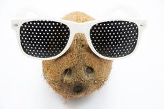 Καρύδα στα γυαλιά σε ένα γκρίζο υπόβαθρο Στοκ φωτογραφίες με δικαίωμα ελεύθερης χρήσης