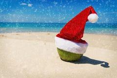 Καρύδα στην τροπική παραλία άμμου καπέλων Χριστουγέννων Santa Στοκ Φωτογραφίες