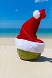 Καρύδα στην τροπική παραλία άμμου καπέλων Χριστουγέννων Santa Στοκ Φωτογραφία