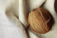Καρύδα στο ύφασμα στοκ φωτογραφίες με δικαίωμα ελεύθερης χρήσης