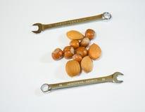 Καρύδια και κλειδιά 2 Στοκ φωτογραφία με δικαίωμα ελεύθερης χρήσης