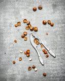 Καρύδια με έναν καρυοθραύστης Στοκ Εικόνες