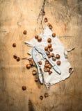 Καρύδια με τον καρυοθραύστης και το κοχύλι Στοκ φωτογραφίες με δικαίωμα ελεύθερης χρήσης