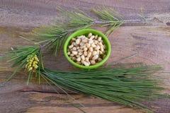Καρύδια πεύκων Στοκ φωτογραφία με δικαίωμα ελεύθερης χρήσης