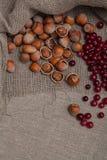 καρύδια των βακκίνιων Στοκ εικόνα με δικαίωμα ελεύθερης χρήσης