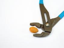 Καρύδι και γαλλικό κλειδί Στοκ φωτογραφία με δικαίωμα ελεύθερης χρήσης
