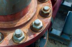 καρύδι μπουλονιών σκουρ Στοκ εικόνες με δικαίωμα ελεύθερης χρήσης