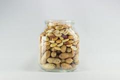 Καρύδι τροφίμων penaut Στοκ Εικόνες
