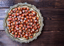 Καρύδι φουντουκιών στο κοχύλι Στοκ Εικόνα
