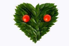 Καρδιά από τα πράσινα φύλλα με τις ντομάτες Ακόμα η ζωή μοιάζει με ένα FA Στοκ εικόνα με δικαίωμα ελεύθερης χρήσης