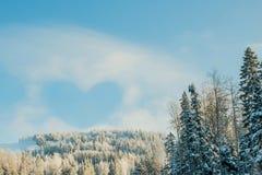 Καρδιά από το σύννεφο στο μπλε ουρανό επάνω από treetops Στοκ εικόνες με δικαίωμα ελεύθερης χρήσης