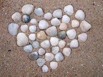 Καρδιά θαλασσινών κοχυλιών Στοκ φωτογραφία με δικαίωμα ελεύθερης χρήσης