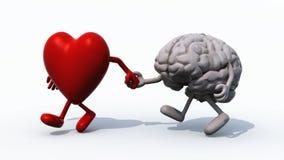 Καρδιά και εγκέφαλος που περπατούν χέρι-χέρι διανυσματική απεικόνιση