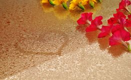Καρδιά και λουλούδια σε ένα υγρό γυαλί Στοκ εικόνες με δικαίωμα ελεύθερης χρήσης