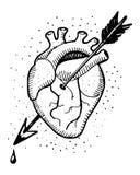 Καρδιά και arow απεικόνιση Στοκ Εικόνες