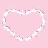 Καρδιά κουνελιών Στοκ Εικόνες