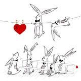 Καρδιά κουνελιών Στοκ Φωτογραφίες