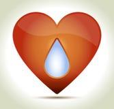 00217-καρδιά-κρανίο Στοκ φωτογραφία με δικαίωμα ελεύθερης χρήσης