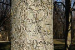 Καρδιά με τα αρχικά του ζεύγους ερωτευμένα Στοκ εικόνα με δικαίωμα ελεύθερης χρήσης