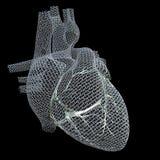 Καρδιά πλέγματος Στοκ εικόνα με δικαίωμα ελεύθερης χρήσης
