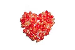 Καρδιά ροδιών Στοκ Φωτογραφία