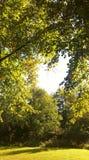 Καρδιά στον ουρανό Στοκ Φωτογραφίες