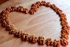 Καρδιά των ξύλων καρυδιάς Στοκ εικόνες με δικαίωμα ελεύθερης χρήσης