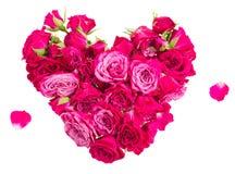 Καρδιά των τριαντάφυλλων Στοκ Εικόνες