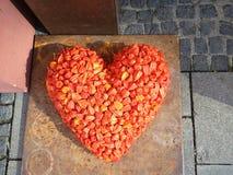 Καρδιά φιαγμένη από cinese φανάρια, alkekengi physalis σε ένα μπάλωμα Στοκ εικόνα με δικαίωμα ελεύθερης χρήσης