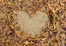 καρδιά χλόης πλαισίων που διαμορφώνεται των ξηρών φύλλων στο έδαφος Στοκ φωτογραφία με δικαίωμα ελεύθερης χρήσης