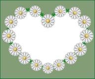 Καρδιά Chamomile διανυσματική απεικόνιση