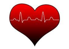 Καρδιά Ekg ecg Στοκ φωτογραφία με δικαίωμα ελεύθερης χρήσης